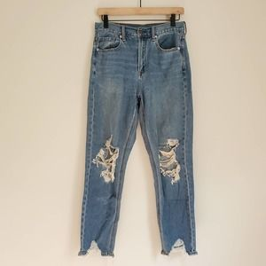 American Eagle Distressed Mom Jeans 2 SHORT